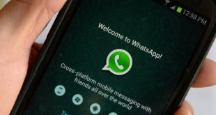 Quick quotes are getting tested in WhatsApp